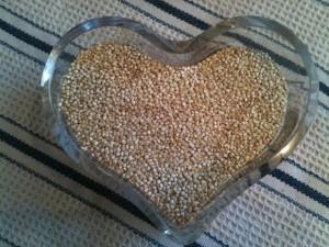 quinoa bergenholtz 3.16.14