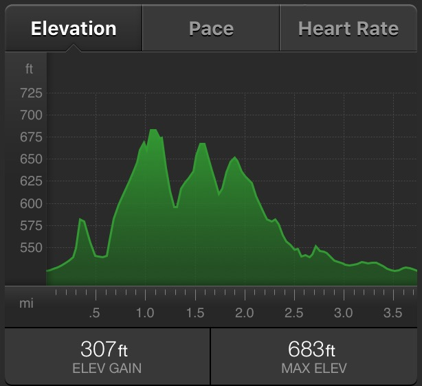 Elevation profile of the race. Just in case you were wondering.